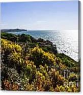 Bass Strait Ocean Landscape In Tasmania Canvas Print