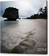 Bathsheba Beach Barbados Canvas Print