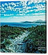 Beach Track Canvas Print