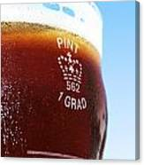 Beer Pint Glass Canvas Print