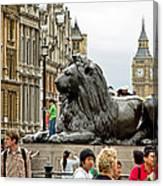 Big Lion Little Ben Canvas Print