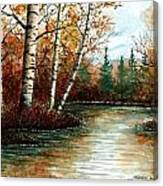 Birch Pond Canvas Print