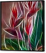 Bird Of Paradise Fractal Canvas Print