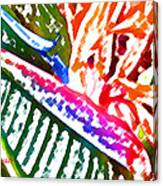 Bird of Paradise Painted Canvas Print