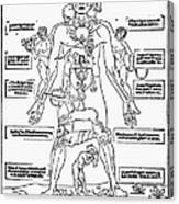 Bloodletting Chart, 1493 Canvas Print