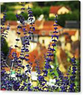 Blue Flowers And Rooftops In Sarlat Canvas Print