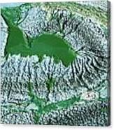 Blue-green Algae Canvas Print