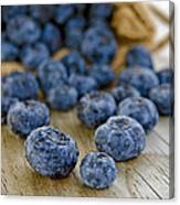 Blueberry Bag Canvas Print