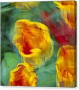 Blurred Tulips Canvas Print