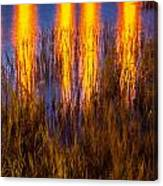 Bridge Of Lions Reflections St Augustine Florida Painted    Canvas Print