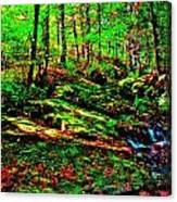 Brook Texture 16 Canvas Print
