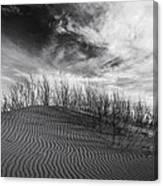 Bruneau Dunes State Park Idaho Canvas Print