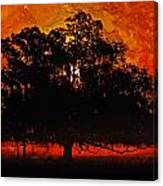 Burning Tree Canvas Print