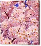 Bursting With Blossoms Canvas Print