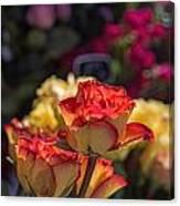 Buy Me A Rose Canvas Print