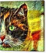 Calico Kitty Canvas Print