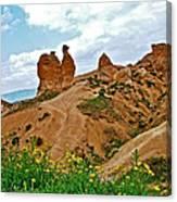 Camel In Camel Valley In Cappadocia-turkey Canvas Print