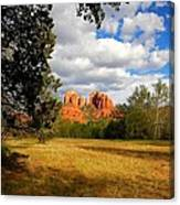 Cathedral Clearing Canvas Print