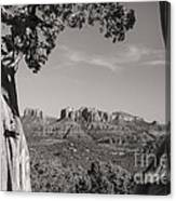 Cathedral Rock Framed By Juniper In Sedona Arizona Canvas Print