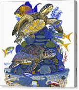 Cayman Turtles Canvas Print