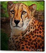 Cheetah Mama Canvas Print