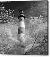 Chincoteague Island Lighthouse Canvas Print