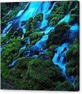 Clearwater Falls Canvas Print
