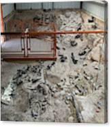 Cleveland-lloyd Dinosaur Quarry Fossils Canvas Print