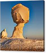 Cock And Mushroom Formation In White Desert Canvas Print
