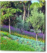 Colorful Park With Flowers Canvas Print