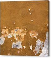 Cracked Stucco - Grunge Background Canvas Print
