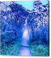 Craggy Gardens North Carolina Blue Ridge Parkway Autumn Nc Sceni Canvas Print