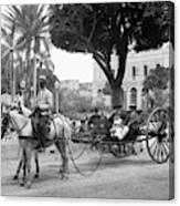 Cuba Havana, C1904 Canvas Print