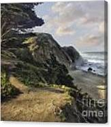 Cypress Path Impasto Canvas Print