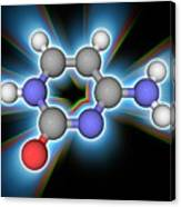 Cytosine Organic Compound Molecule Canvas Print