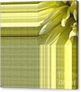 Dahlia Named Canary Fubuki Canvas Print