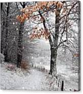 Danish Winter  Canvas Print