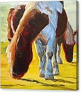 Dartmoor Ponies Painting Canvas Print
