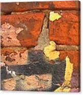 Decay Beauty Canvas Print