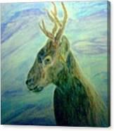 Deer At Home Canvas Print