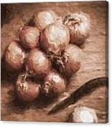 Digital Painting Of Brown Onions On Kitchen Table Canvas Print