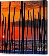 Digital Painting Of Looking Through Beach Umbrella Poles At Sunset Canvas Print