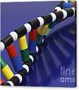 Dna Double Helix Canvas Print