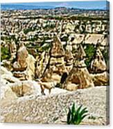 Dog Looking At Fairy Chimneys In Cappadocia-turkey Canvas Print