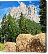 Dolomiti - Alpine Pasture Canvas Print