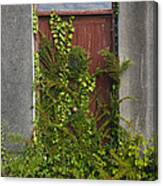 Door Of Old House Canvas Print