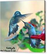 Double Hummer Canvas Print