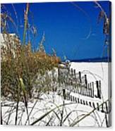Dune Fence Me In Canvas Print