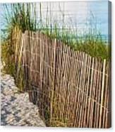 Dune Fence On Beach  Canvas Print