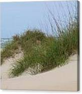 Dunes And Grasses 10 Canvas Print